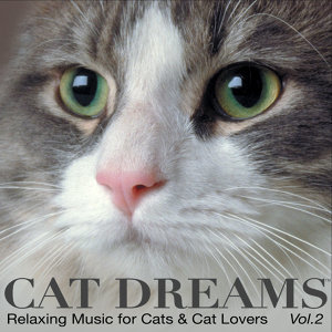 CAT DREAMS - Relaxing Music for Cats & Cat lovers Vol.2