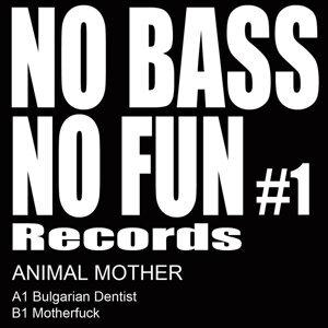 No Bass No Fun 01