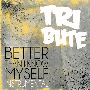 Better Than I Know Myself (Adam Lambert Instrumental Tribute) - Single