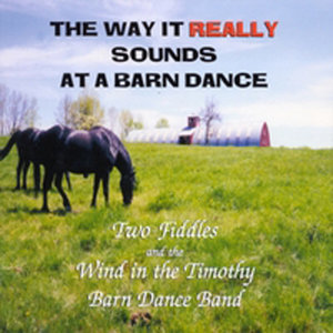 The Way It Really Sounds At A Barn Dance