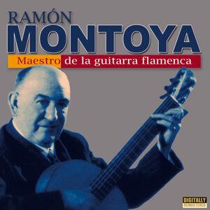 Maestro de la Guitarra Flamenca