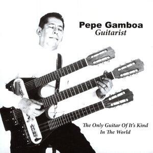 Pepe Gamboa Guitarist