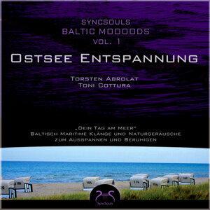 Syncsouls Baltic Moooods - Ostsee-Entspannung: Meeresrauschen, Wellen, Möwen und Klänge zum Ausspannen und Beruhigen