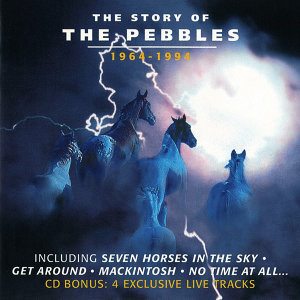 The Story Of The Pebbles [1964-1994]
