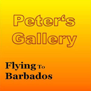 Flying To Barbados