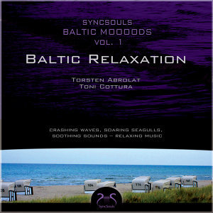 Syncsouls Baltic Moooods - Relaxation by the sea - Crashing Waves, Soaring Seagulls, Soothing Sounds - Relaxing Music