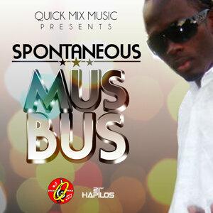 Mus Bus