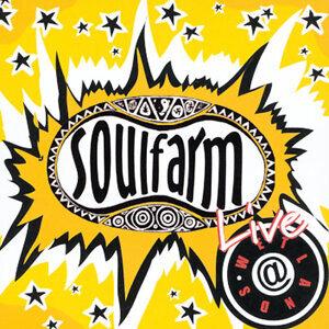 SoulFarm-Live At Wetlands