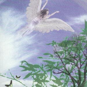 Angel of the Diamond Wind