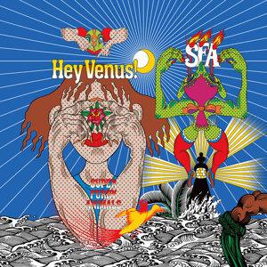 Hey Venus!