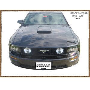 Neilla's Mustang