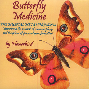 Butterfly Medicine