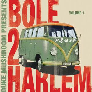 Bole 2 Harlem Vol #1