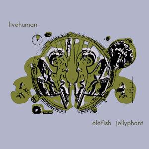 Elefish Jellyphant