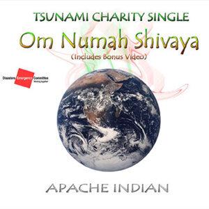 Om Numah Shivaya