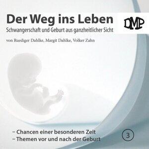 Der Weg ins Leben - Chancen einer besonderen Zeit / Themen vor und nach der Geburt