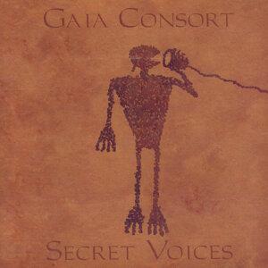 Secret Voices