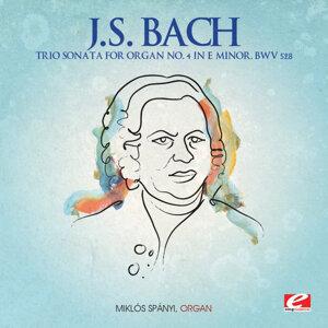 J.S. Bach: Trio Sonata for Organ No. 4 in E Minor, BWV 528 (Digitally Remastered)
