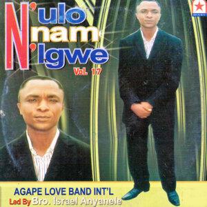 N'ulo Nnam N'igwe, Vol. 17