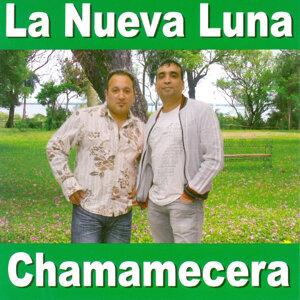 Chamamecera