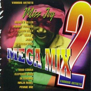 Miss Ivy Mega Mix Vol. 2