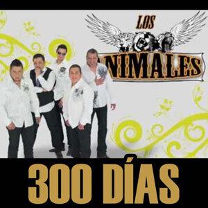 300 Días - Single