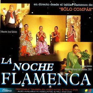 La noche flamenca