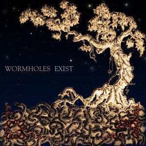 Wormholes Exist