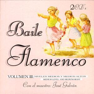 Baile Flamenco Vol III. Nivel Medio-Alto