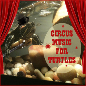 Circus Music for Turtles