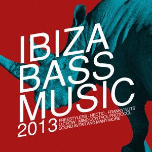 Ibiza Bass Music 2013