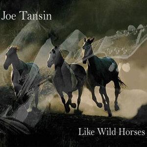 Like Wild horses