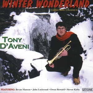 Winter Wonderland-Christmas Classics