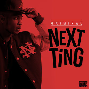 Next Ting