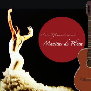 El Arte del Flamenco de Manos De... Manitas de Plata!