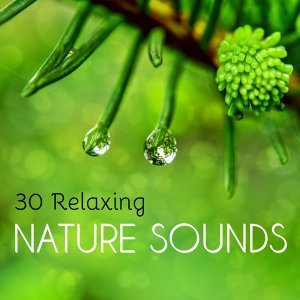 30 Relaxing Nature Sounds - Soothing Water and Earth Noises to Improve Meditation and Sleep