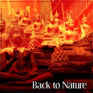Back to Nature – Peaceful Nature Sounds, Reiki Sounds, Yoga Meditation, New Balance, Inner Peace, Deep Relaxing Music