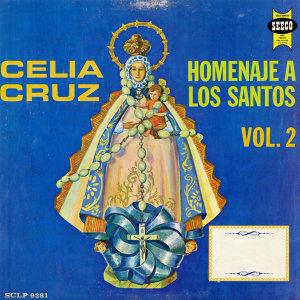 Homenaje A Los Santos Vol.2