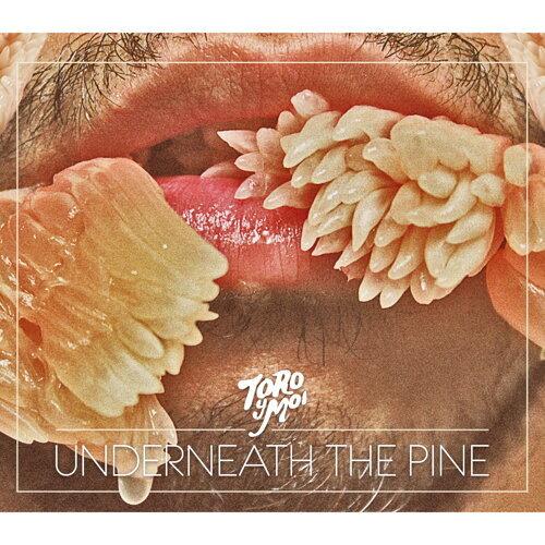 Underneath The Pine (路邊一棵松樹下)