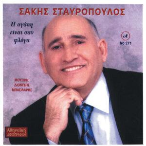 H Agapi Einai San Floga, Nikos Stauropoulos