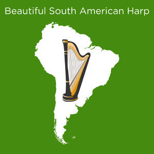 Beautiful South American Harp
