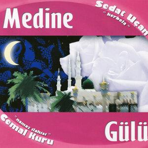 Medine Gülü