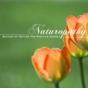 Naturopathy - Sounds of Nature for Positive Energy, Mind Body Connection