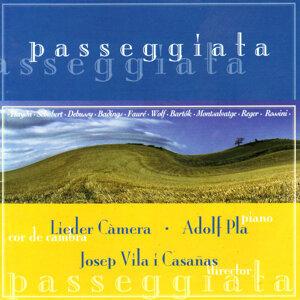Passeggiata - Hadyn, Schubert, Debussy, Badings, etc