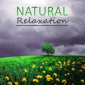 Natural Relaxation – Nature Sounds, Calm Waves, Tranquility, Calm Spirit, Soft Music