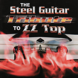 The Steel Guitar Tribute To ZZ Top