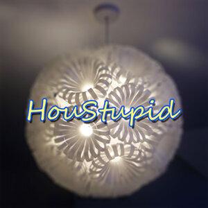 Houstupid