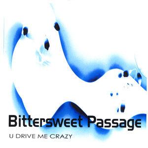 U Drive Me Crazy