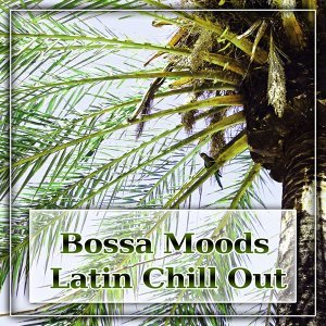 Bossa Moods Latin Chill Out - Summer Solstice, Summer Ibiza, Lounge Evolution