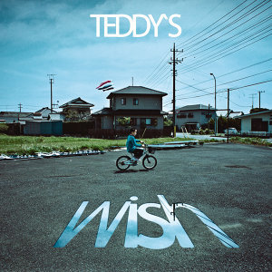 Teddy's Wish